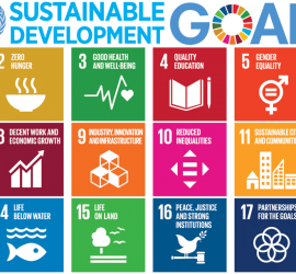 Circular Challenge - sustainable development goals